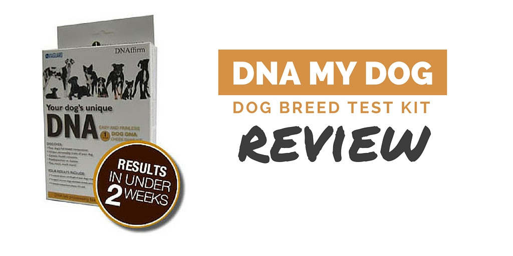 Dog Breed Selector Test