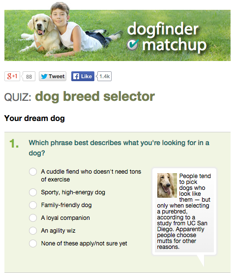 What Dog Should I Get Quiz Animal Planet